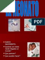 El Neonato - Diapositivas