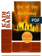Out of the Wilderness - Kadesh Barnea