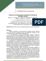Estudio de la Carbonatación Acelerada en Probetas de Hormigón Armado (Argentina)