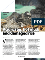 RT Vol. 6, No. 2 Acid water, hot mud, and damaged rice