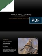 Familia Troglodytidae
