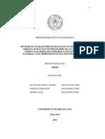 Pkmp 2011 Um Sa'Diyah Sintesis Dan Karakterisasi Kemagnetan.doc Copy