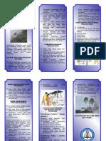 Ibu Bayi Sehat leaflet