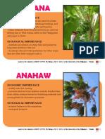 PGH Plants