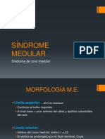 Cono Medular