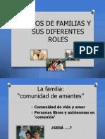 Tipos de Familias y Sus Diferentes Roles