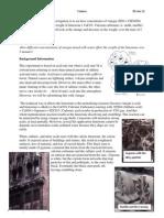 Lab Report Acid on Limestone