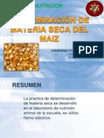 DETERMINACIÓN DE MATERIA SECA DEL MAIZ