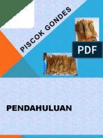 PISCOK GONDES