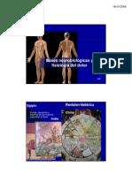 Tema 1 Fisioterapia y Dolor