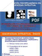 Disc Intelect 2012