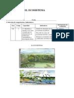 El Ecosistema21
