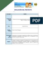 desarrollo_propuesta_Curso