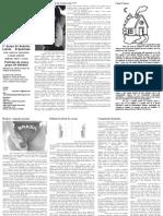 Jornal 8