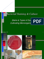 Module 3a - Culture and Staining