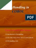 Cobol File Handling