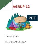 ACAGRUP 12