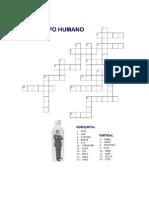 Crucigrama El Cuerpo Humano Inglés-español