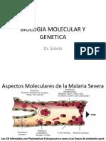 13biologia Molecular y Genetica (Dr. Sotelo)