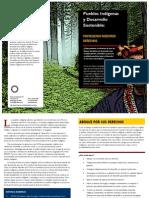 Pueblos indígenas y Desarrollo Sostenible
