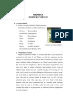 Chapter II ABC Penelitian Rara