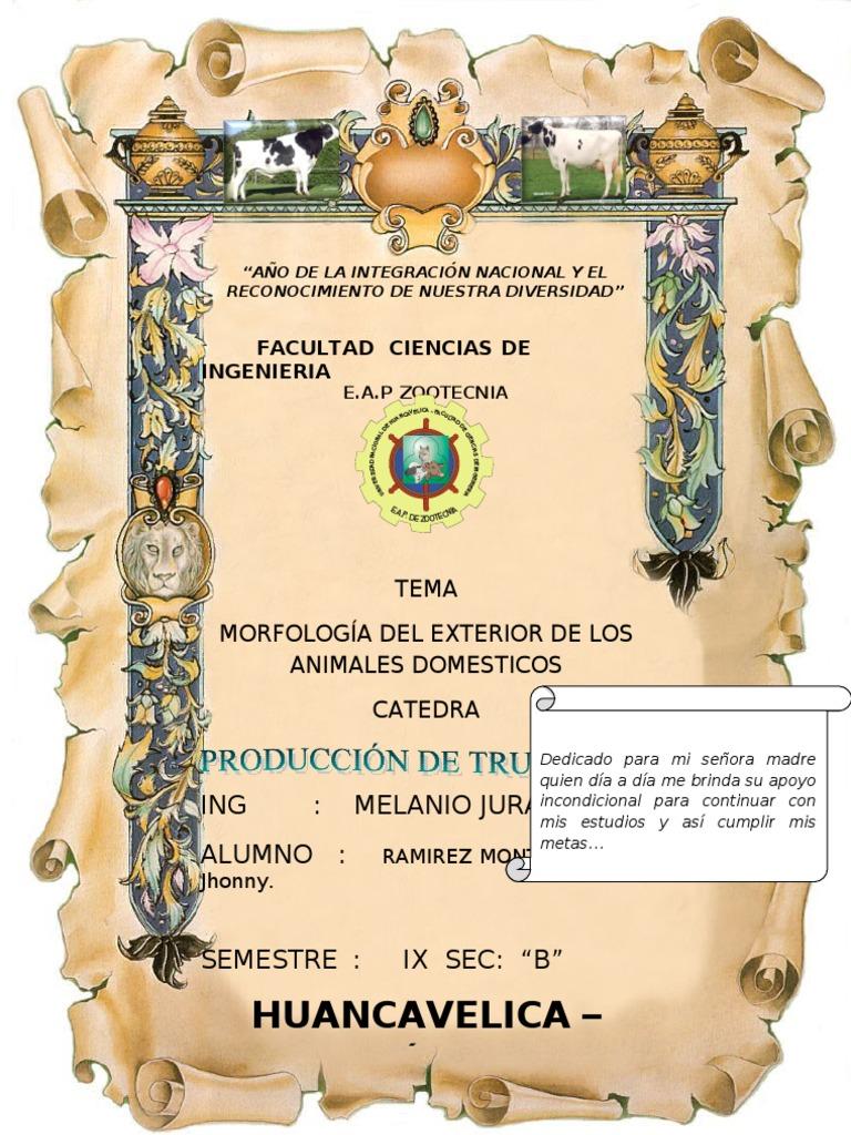 Partes Externas de Los ANIMALES