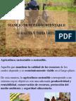 1 Labranza y Prácticas sustentables