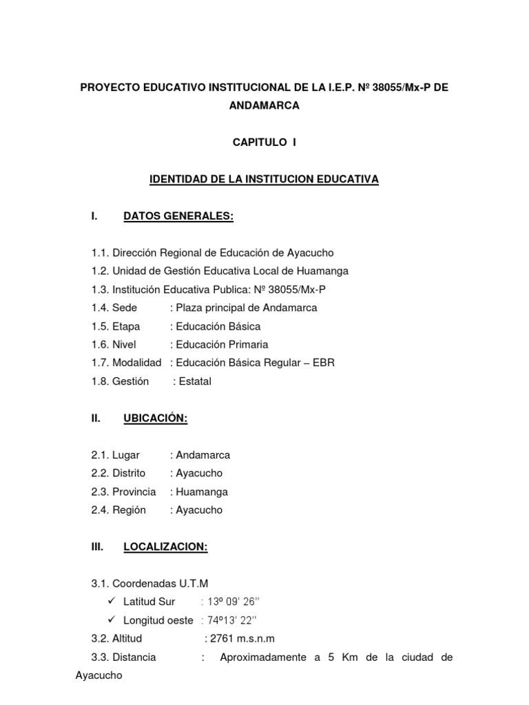 PROYECTO - PEI primaria de 1º a 6º GRADO DE CÉSAR R. SÁNCHEZ M.