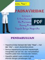 HEPADNAVIRIDAE [Autosaved]