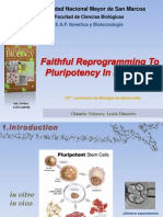 Faithful Reprogramming to Pluripotency in Mammals