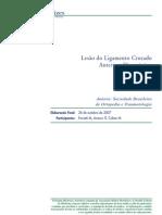 Diretrizes Diagnostico Lesoes LCA