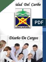 Diseño de Cargos