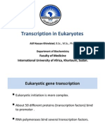 Transcription in Eukaryotic Cells