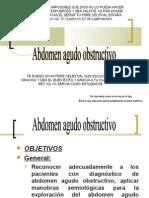 abdomenagudoobstructivoseminario-090830202925-phpapp01-1