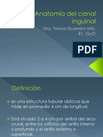 Hernia Inguinal y Anatomia