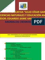 anomalascromosmicas97-2003-090414020548-phpapp02