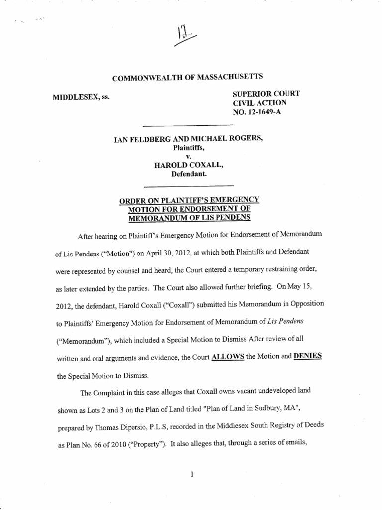 Feldberg Et Al V Coxall Order On Plaintiffs Emergency Motion For