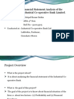 Project Report Financial Statement