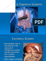 Excretory System & Digestive