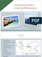 Zona Biopedoclimatica Subtropicala/Mediteraneana