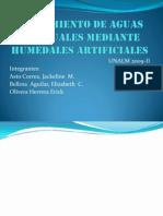 Tratamiento de Aguas Residuales Mediante Humedales Artificiales
