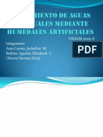 Tratamiento de Aguas Residuales Mediante Humedales Artificiales