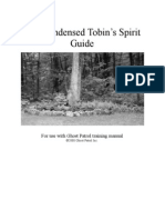 To Bins Spirit Guide