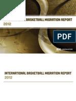 IBMR_2012_light.pdf