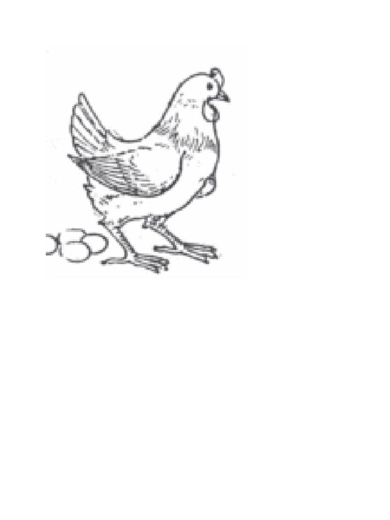 Mewarnai Dan Menggambar Untuk Anak