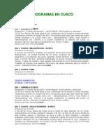 Descriptivos de Programas en Cusco