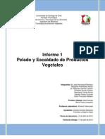 Informe 1 de Vegetales Pelado y Escaldado