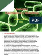 Bacterias Disetacion