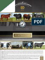 Catalogo Ranchogrande Resistencia 2012