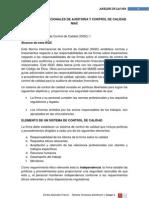 Normas Internacionales de Auditoria y Control de Calidad Niac